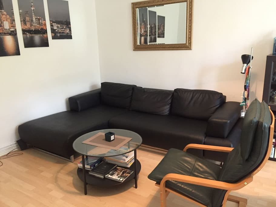 Living room with studio couch (suitable for 1-2 persons)