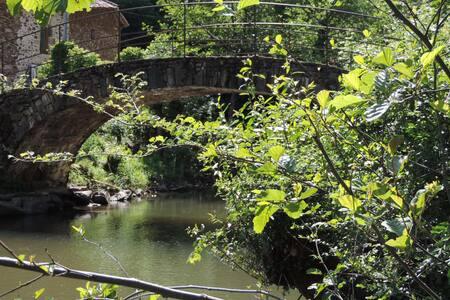 AU VERT en AVEYRON dans un Moulin du 18e - Naussac - Jordhus