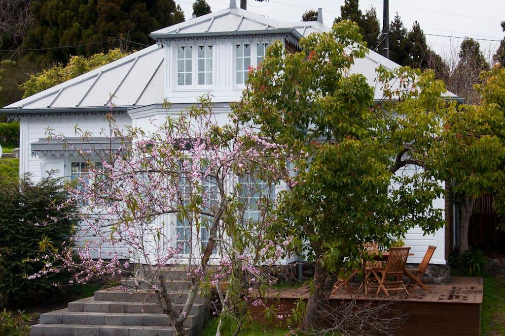 villa volcan maisons louer la plaine des cafres r union. Black Bedroom Furniture Sets. Home Design Ideas