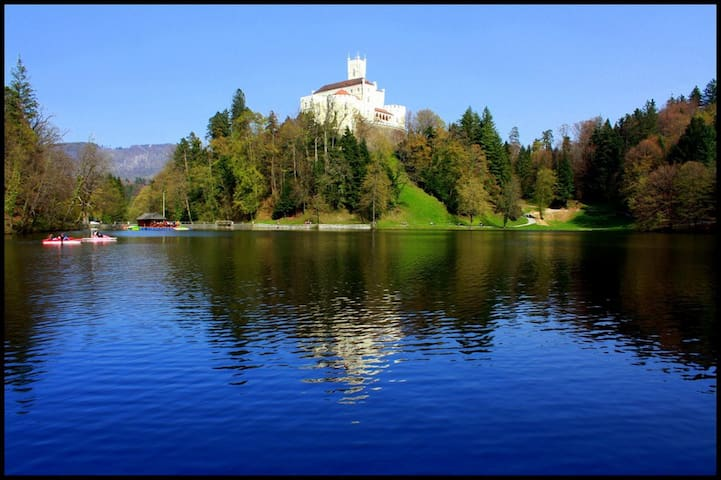 Trakošćan-old castle with beatifull lake where you can walk around (65km)