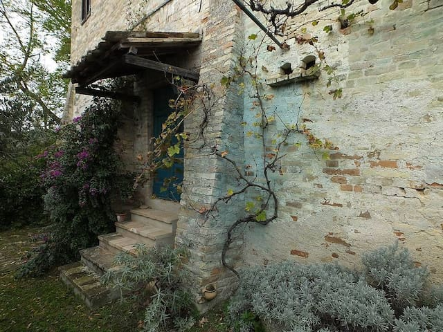 Appartamento con giardino - Montegiorgio - Apartemen
