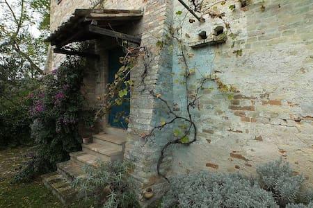 Appartamento con giardino - Montegiorgio - Apartmen