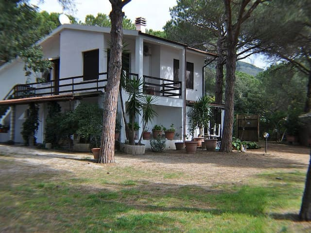 Holiday Apartment with Garden, Terrace and Wi-Fi; Pets allowed