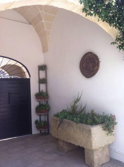 un'antica pila e una vecchia scala ora ospitano piante e spezie