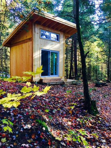 Glamping! Orillia Cabin& Waterfall Bunky 100 acres