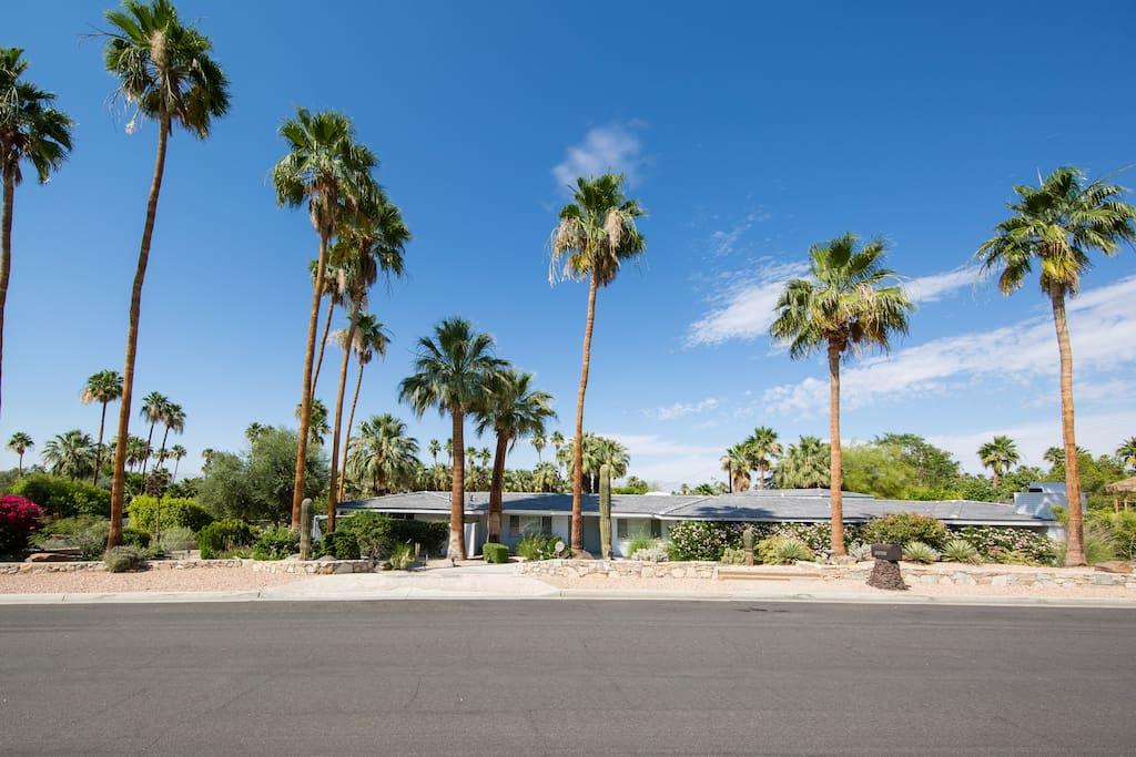A true mid century modern home in Palm Desert