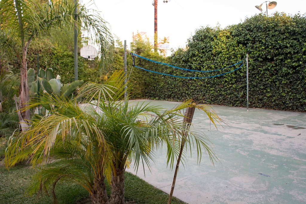 Halfcourt basketball, tennis, volleyball or badminton court.
