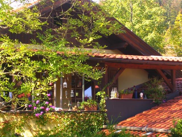Landhaus Südwind Wohnung Höhenrain - Grainau