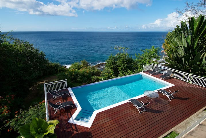 Luxury 12 person Caribbean Villa - Scarborough - House