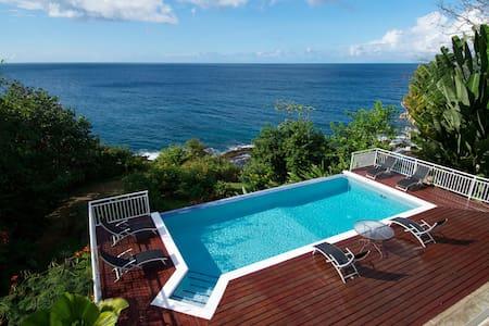 Luxury 12 person Caribbean Villa - Scarborough - Talo