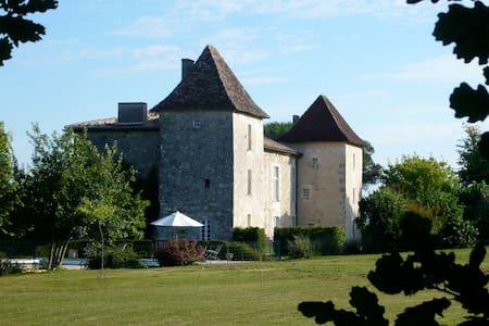 Castle between Bordeaux and Cognac vineyards