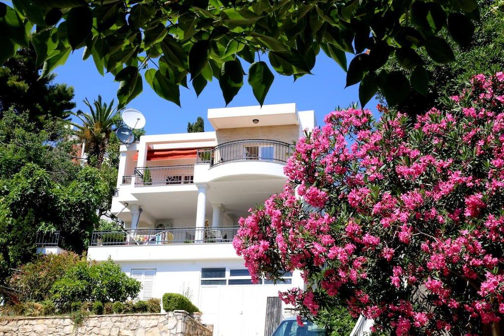 The apartment is in a house, which is lcoated in a green resident part of Ulcinj, near the Small Beach.