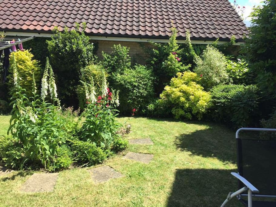 Garden to relax in on a hot summers day