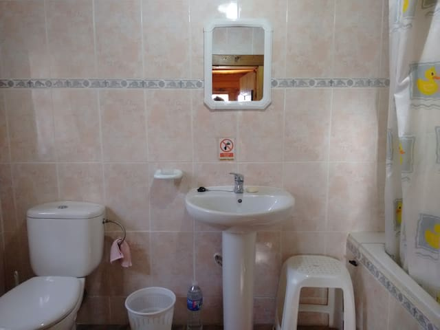 Bathroom with shower, toilet and wash basin.