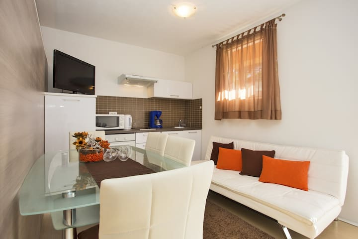 Big house with beautifull apartment - Divšići - Apartment