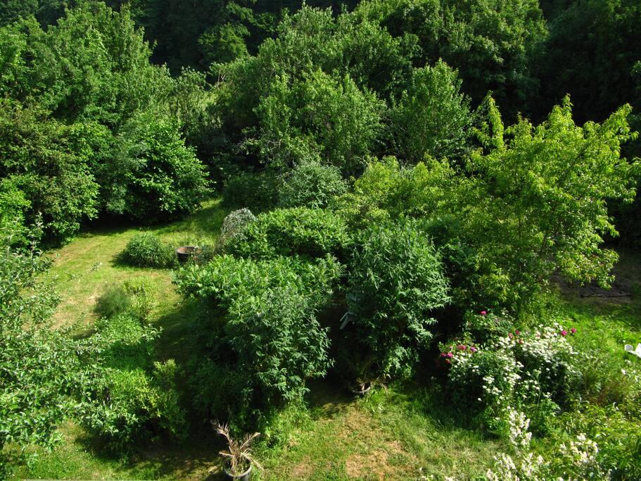 Jardin avec endroit abrité pour prendre le thé ou le petit déjeuner.