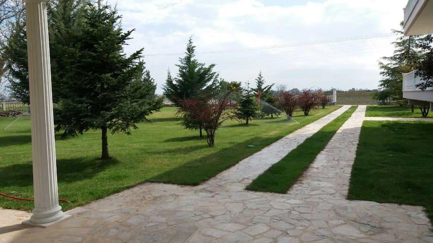 Cosy garden home