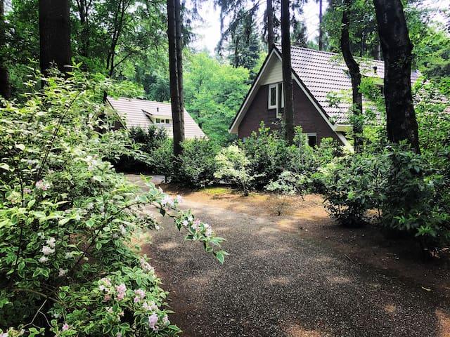 Vrijstaande bungalow op bospark Garderen - Garderen - Bungalow
