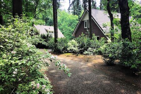 Vrijstaande bungalow op bospark Garderen - Garderen