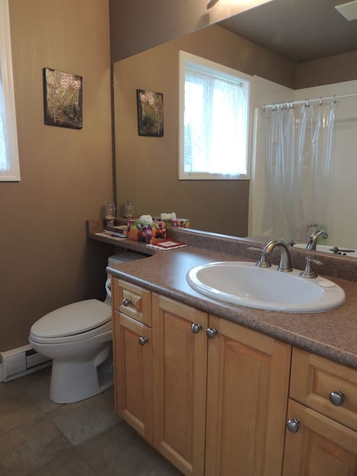 Bathroom with tub/shower, toilet, sink, towels, shampoo/conditioner. All essentials included.