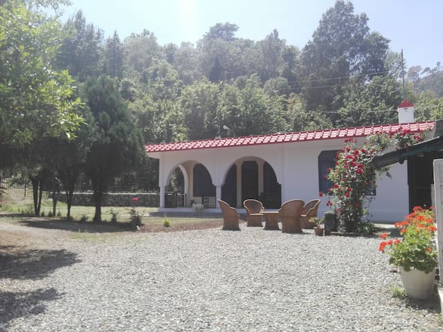 The place is situated near the forest