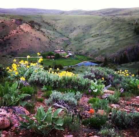 Rimrock Canyon Ranch