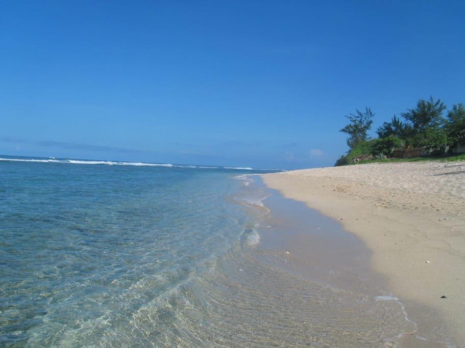 Grande plage de sable blanc protégée par la barrière de corail