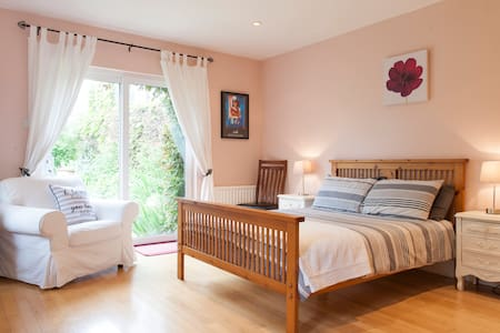 Private en-suite room, own entrance - Dolphin's Barn