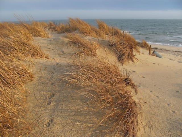 CAPE COD BEACH RESORT OCEANFRONT - Dennis Port - Condominio