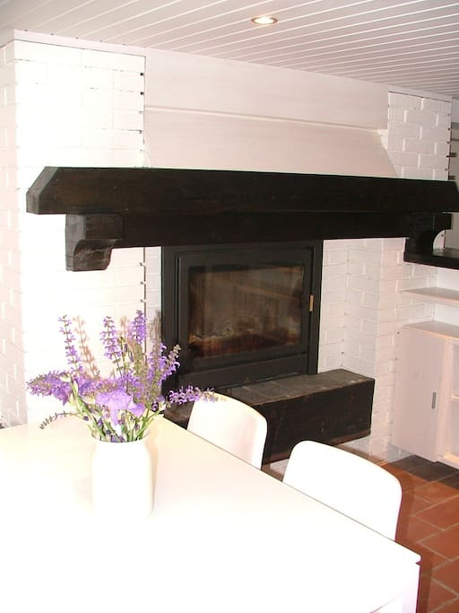 Fireplace in the living room