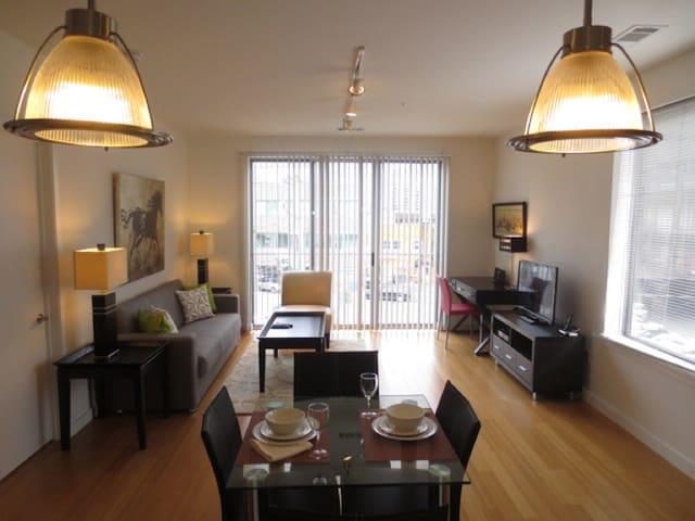 Luxury 2-Bedroom Stamford Apt - Stamford - Apartment