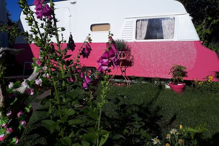 The Pink Basecamp in Lofoten