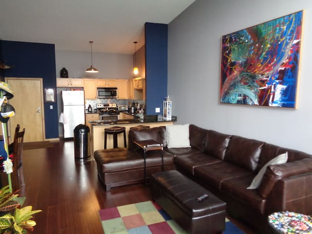 South Minneapolis One Bedroom Condo - Minneapolis - Ortak mülk