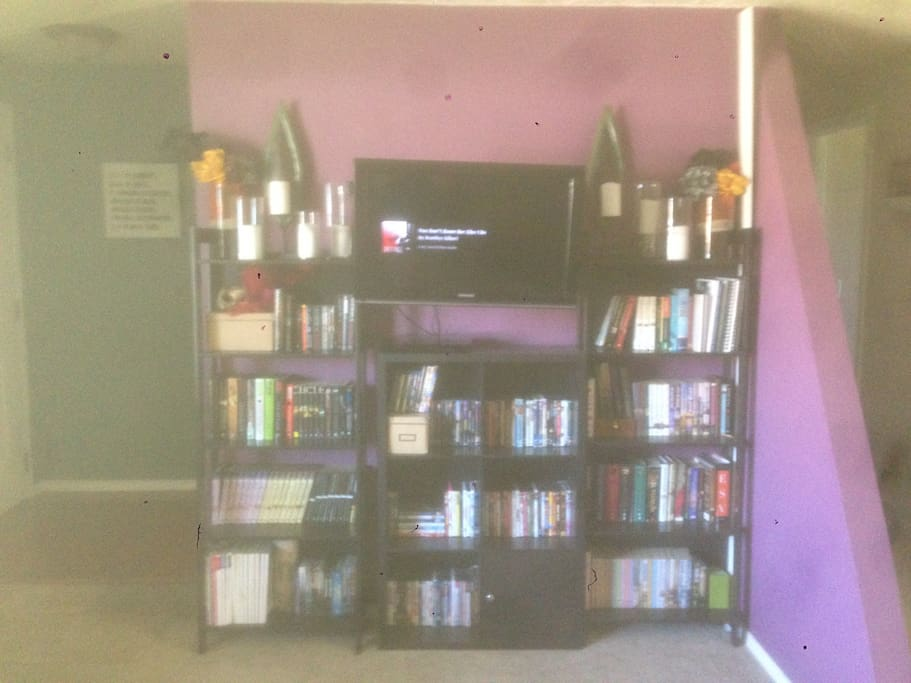 The entertainment center full of movies and books for your enjoyment