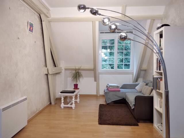 Chambre chez l'habitant près de Fontainebleau
