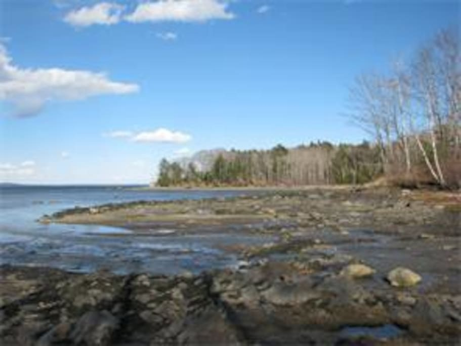 Private cove on Penobscot Bay