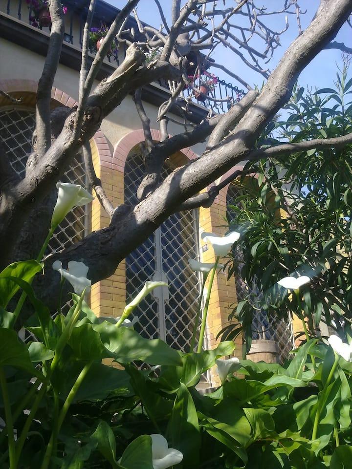 CasaDemaratab&b, camere zona Morgagni / Cittadella