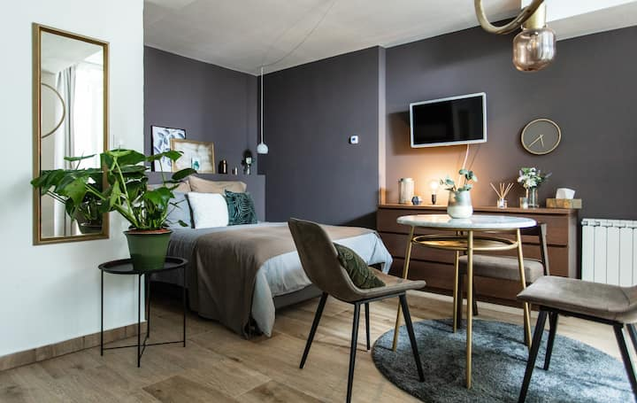 Cozy modern studio in Prague's absolute center