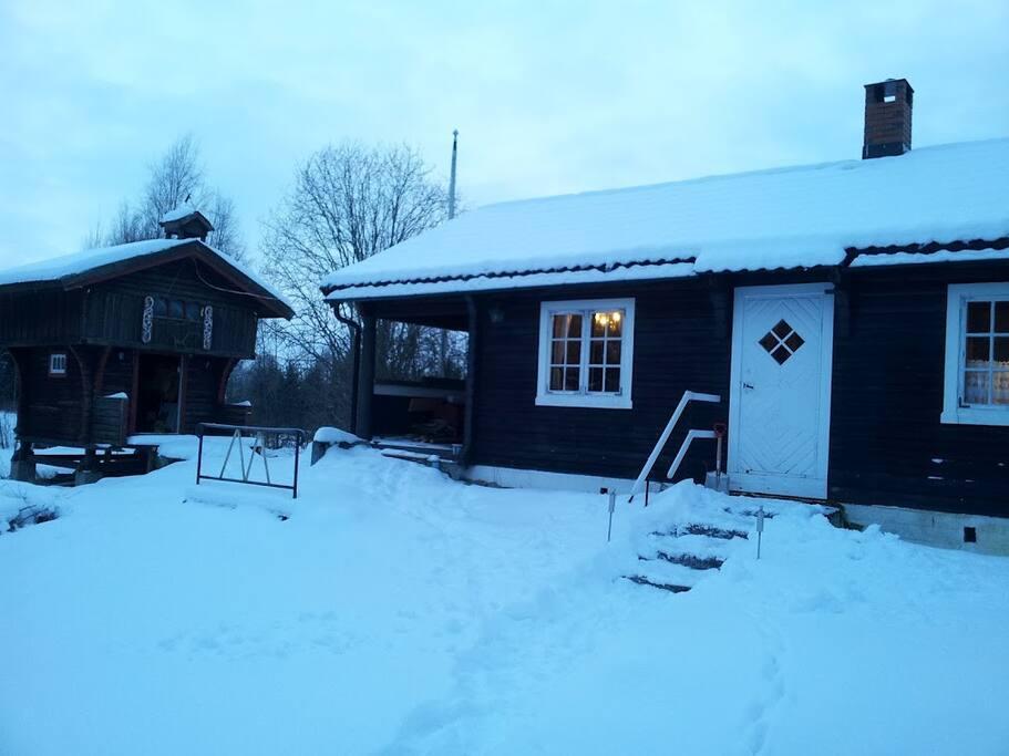 Chill norwegian winter, cross country skiing?