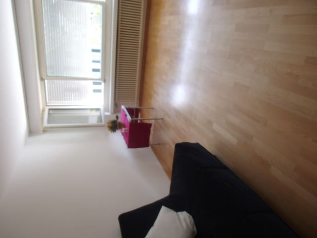CENTRAL! Cosy 1-bedroom flat - Freienbach - Apartemen