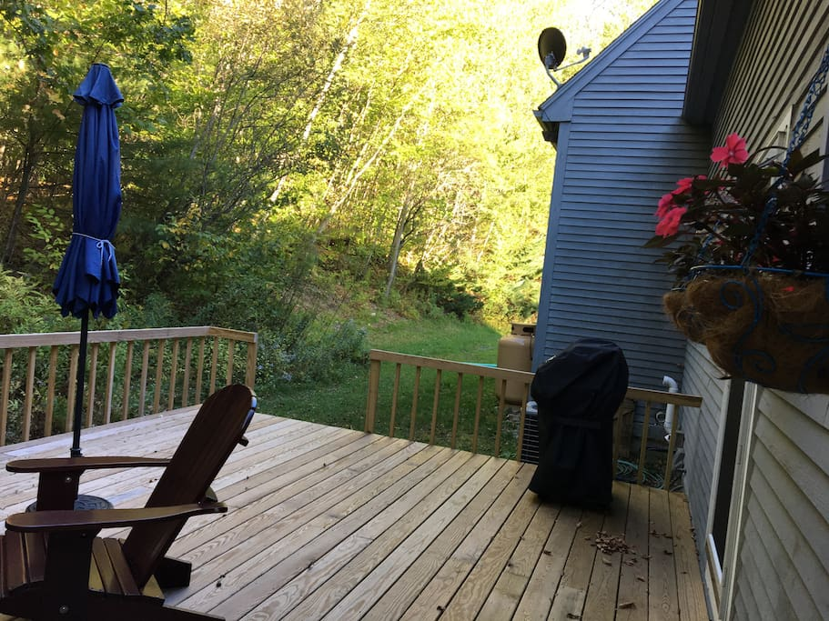 VIEW from BACK DECK w/BBQ and Door to the House on the Right.