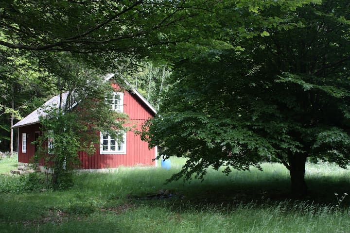 Secluded and idyllic wooden cabin - Färingtofta - Blockhütte