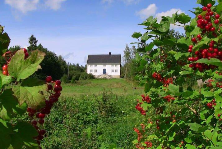 idylliske Øvre Gill Gård - Kristiansand - Lain-lain