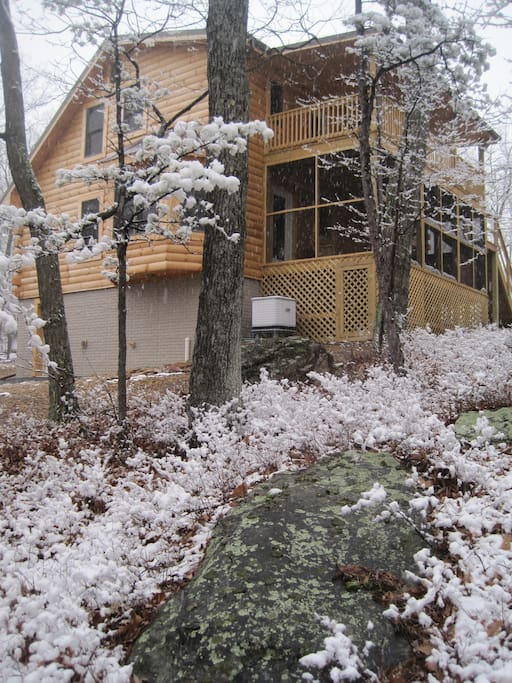 Snow lightly drifts over foliage