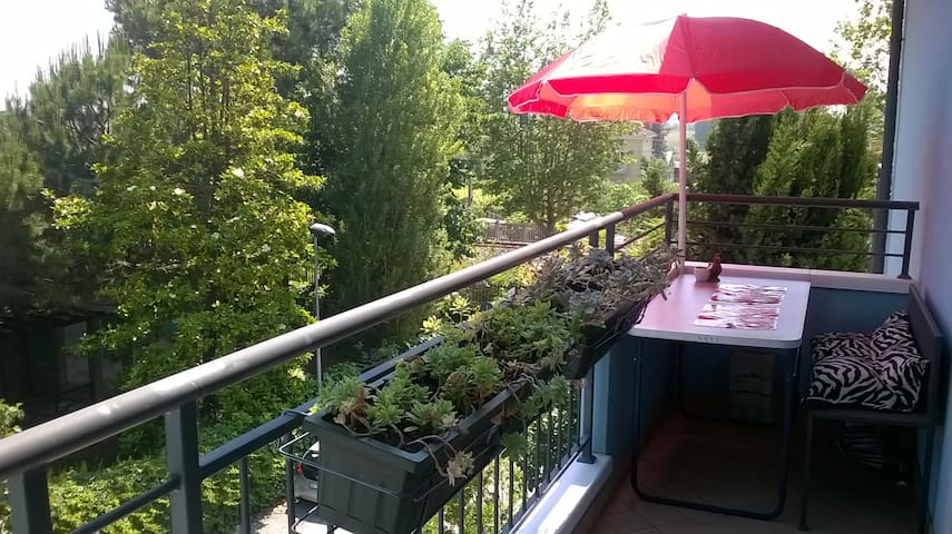 Appartamento tranquillo più bici - Rimini - Apartamento