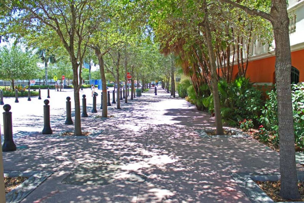 Tree lined Euclid, gated bike storage, and short walk to grocery and the beach