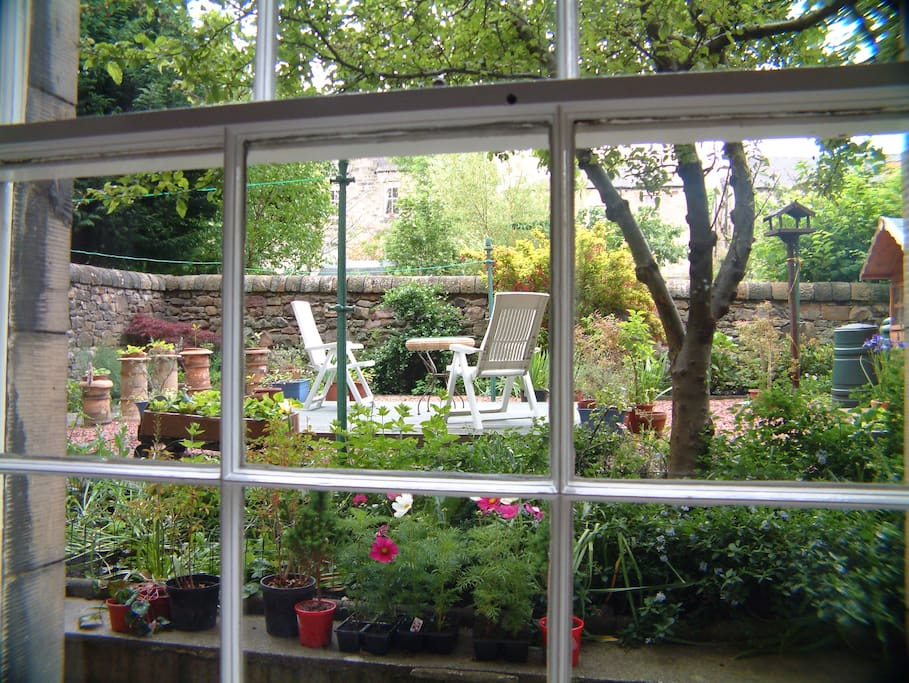 View of garden from the bedroom