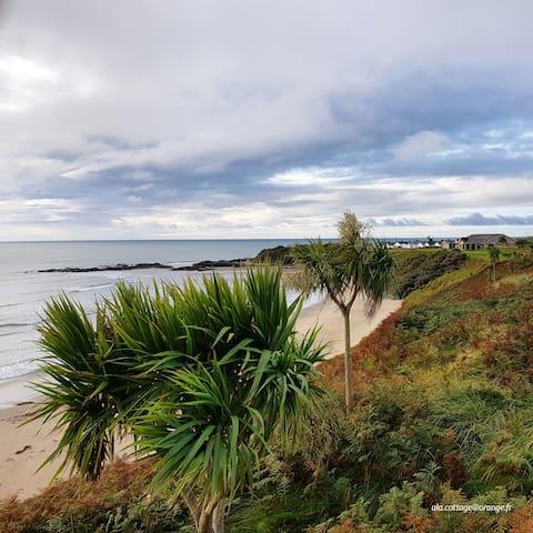 Seaside Cottage in Sunny Rosslare