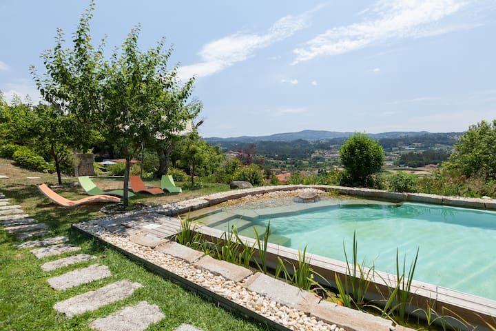Beautiful scenery and private pool - Mozelos - Villa