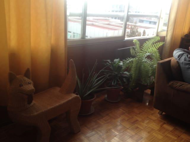 Habitación y baño privado- centrica - Ciudad de México - Bed & Breakfast